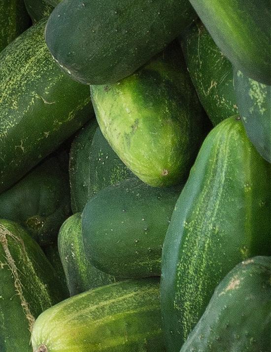 cucumbers-at-market
