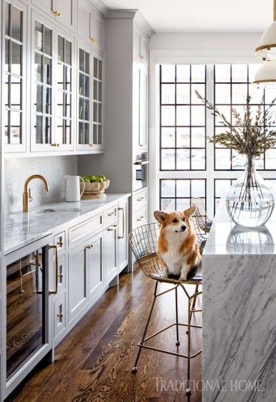 dog-in-kitchen