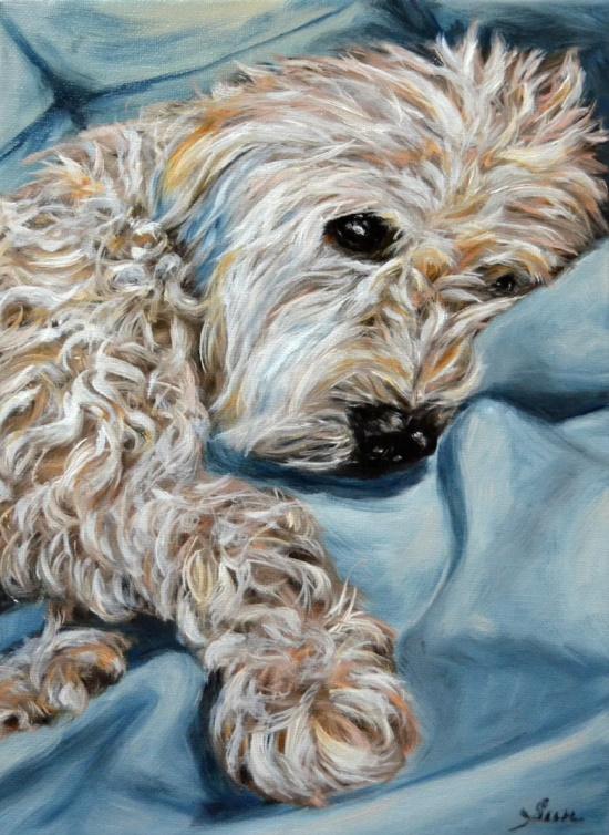 wheaten-Terrier-custom-oil-painting-portrait
