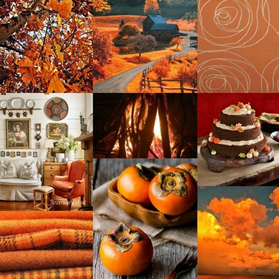 orange-fall-color-crush