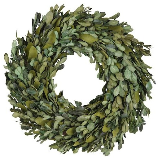 "12"" Preserved Natural Boxwood Leaf Christmas Wreath by Ashland"