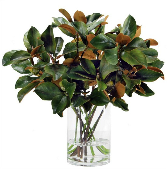 Magnolia+Foliage+in+Glass+Vase