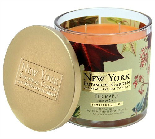 new-york-botanical-garden-red-maple-candle