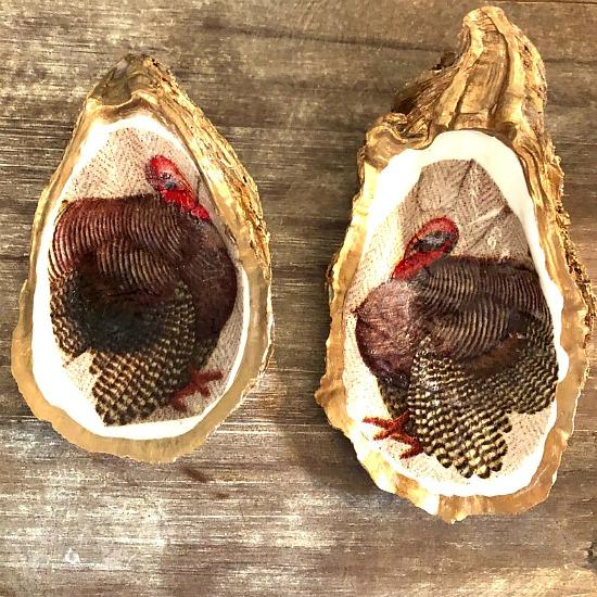 turkey-oyster-shells
