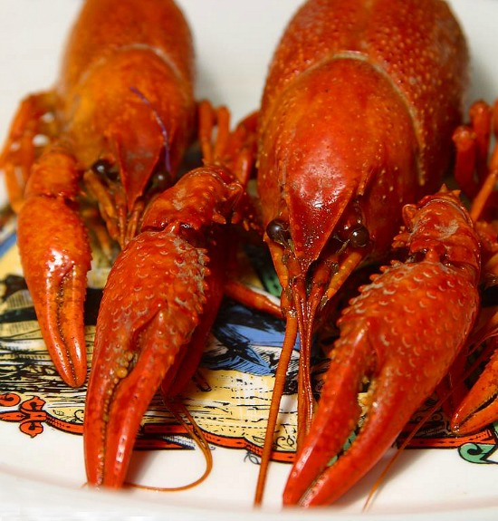 Boiled-Crawfish-on-plate