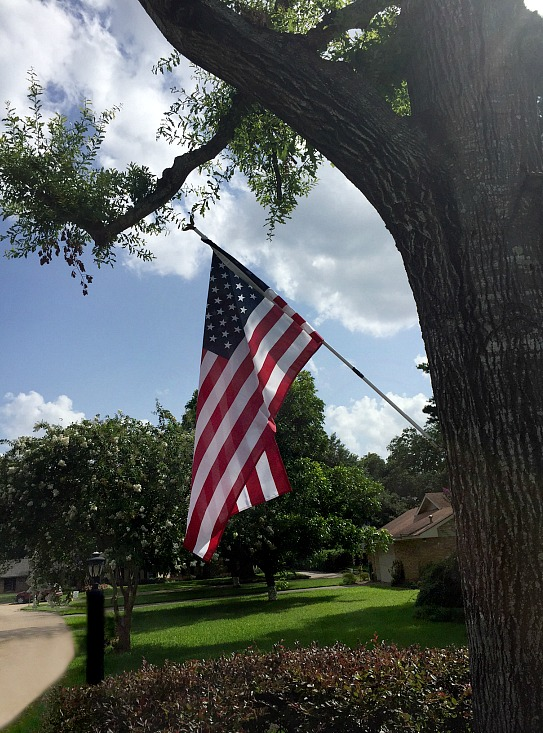 American-flag-displayed-in-tree