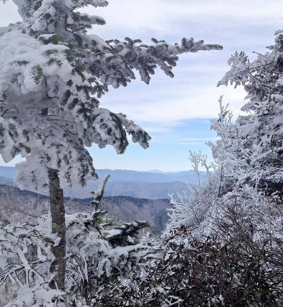Snow-Great-Smoky-Mountains-National-Park
