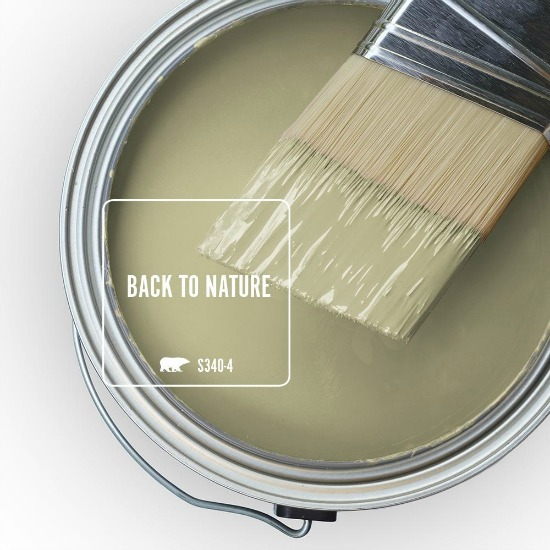 back-to-nature-behr-marquee-paint-color
