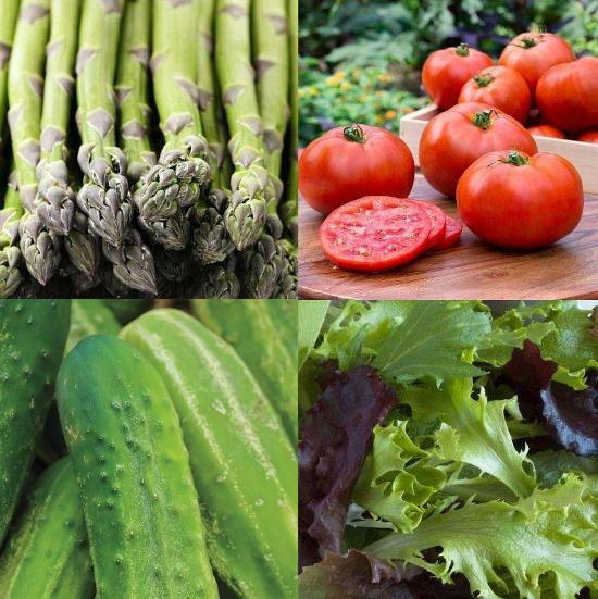 garden-fresh-vegetables-1