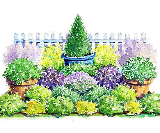 colorful-herb-garden