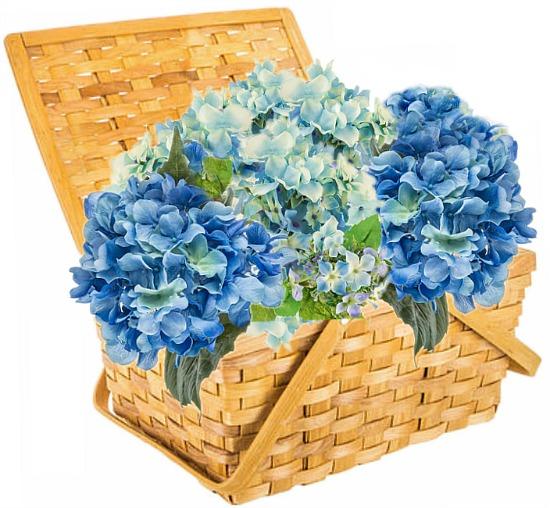 basket-hydrangea