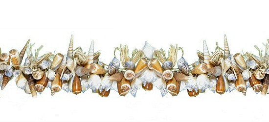 shells-garland