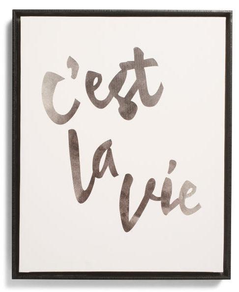 C Est La Vie Framed Canvas