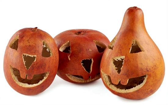 Carved Jack 'O Lantern Gourds