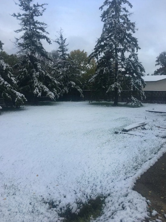 Winnipeg-fall-winter-2018