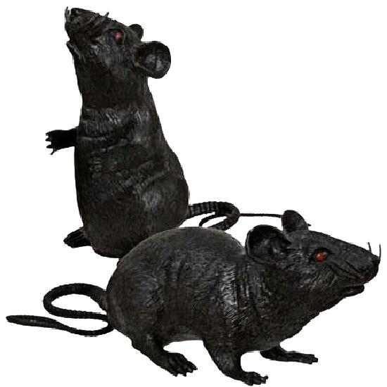 black-rubber-rats