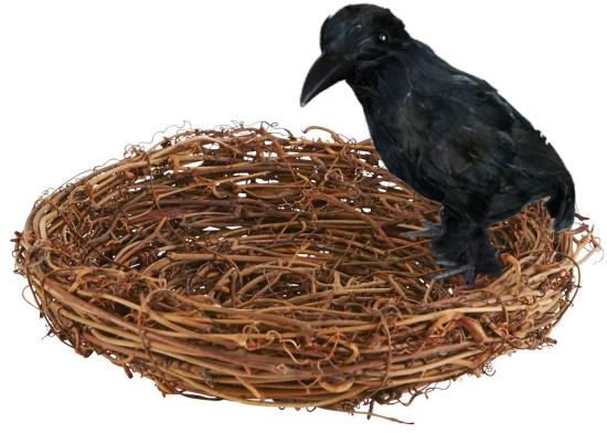 grapevine-bird-nest (1)