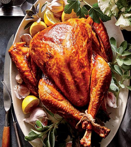 gorgeous turkey