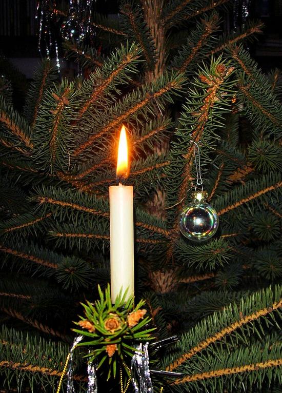 Candle_on_Christmas_tree