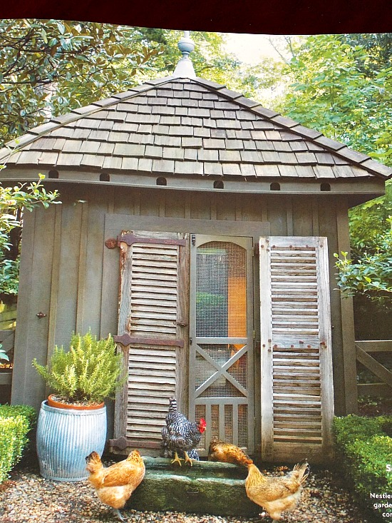chicken coop Southern Living