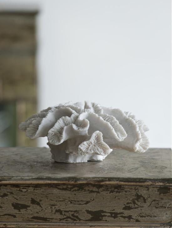 Decorative Palancar Coral Table Décor Figurine