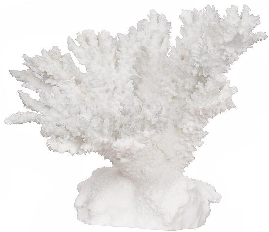 Hodder Coral Sculpture