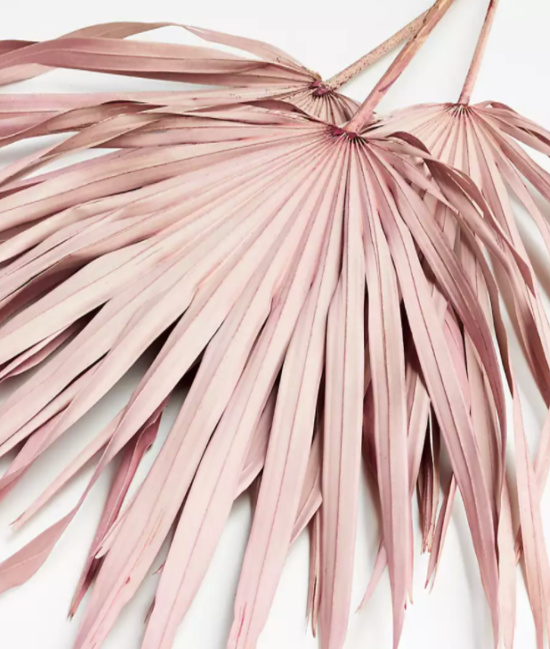 Pink Paper Palms, Set of 3