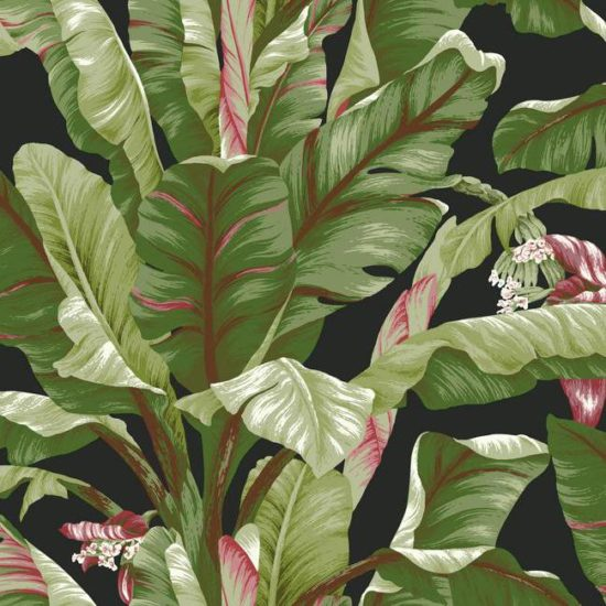 Banana Leaf Wallpaper by York