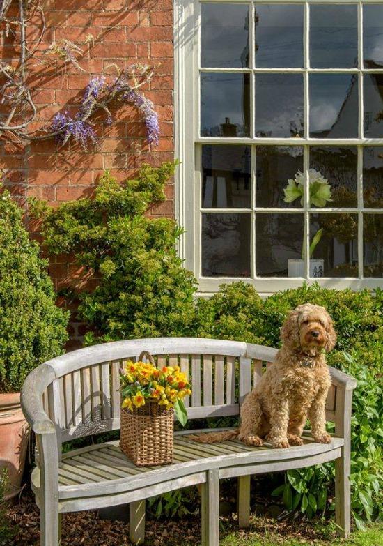 dog-garden-Country-Homes-Interiors-Magazine