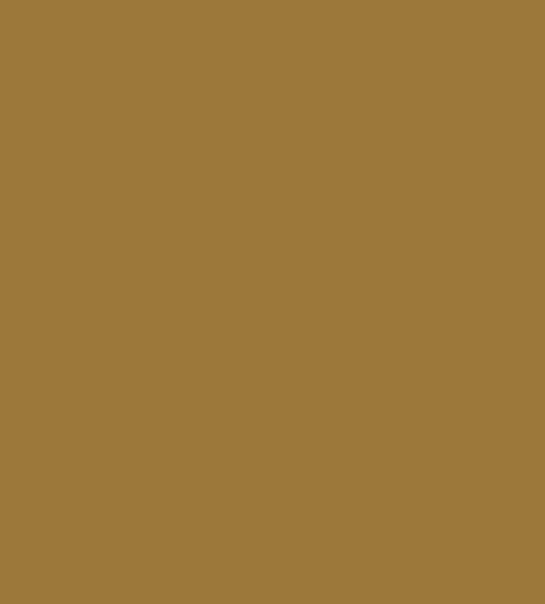 persian-gold-behr-premium-plus-paint-colors