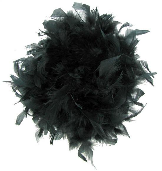 boa feathers