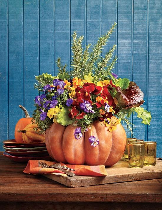 blooming pumpkin