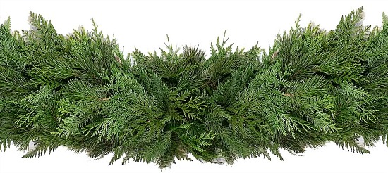 20-ft Fresh Cedar Christmas Garland