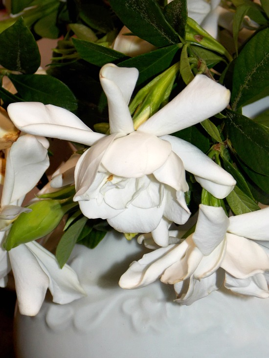 Mother's-Day-gardenia-bouquet