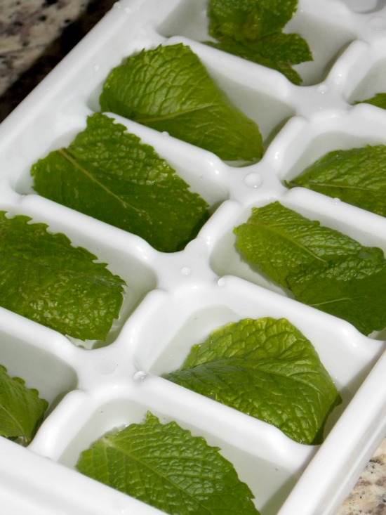 fresh mint ice cubes