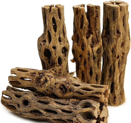 "5 Pieces of 5-6"" Long Natural Cholla Wood"