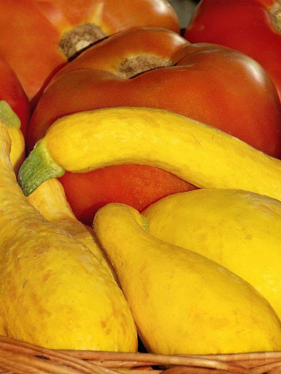 fresh-tomatoes-squash-1