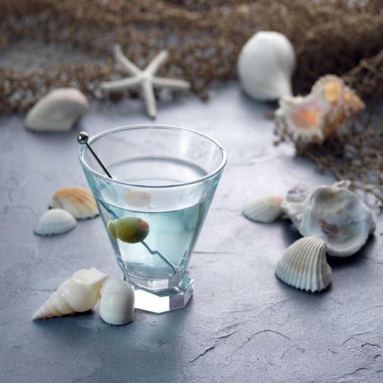 Halli 8 oz. Crystal Martini Glass (Set of 2)