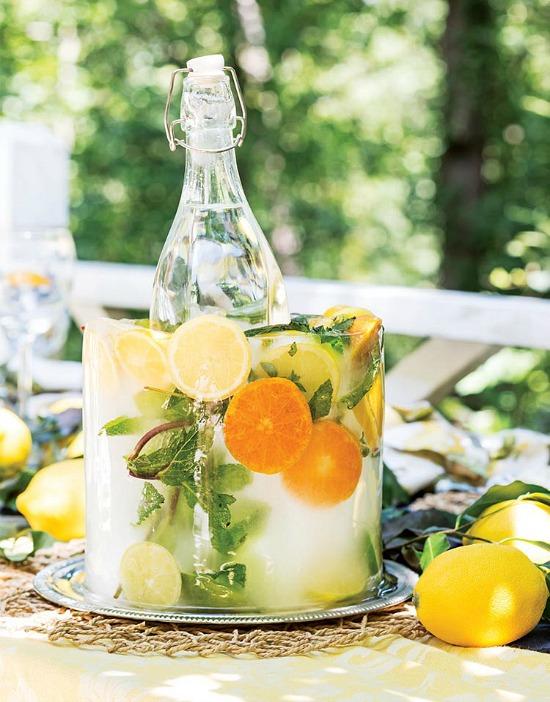 lemon-orange-citrus-ice-block