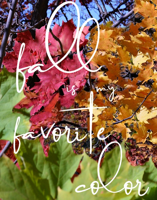fall-is-my-favorite-color-blog