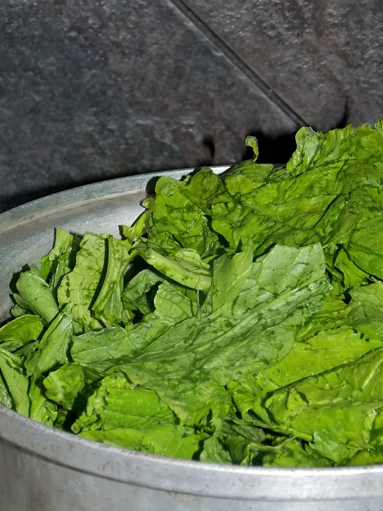 mustard-greens-in-pot