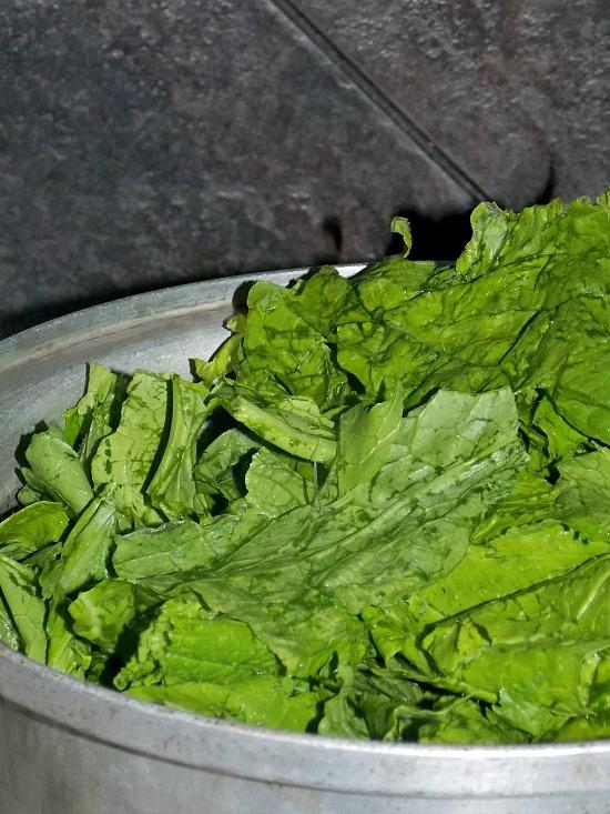mustard-greens-in-pot