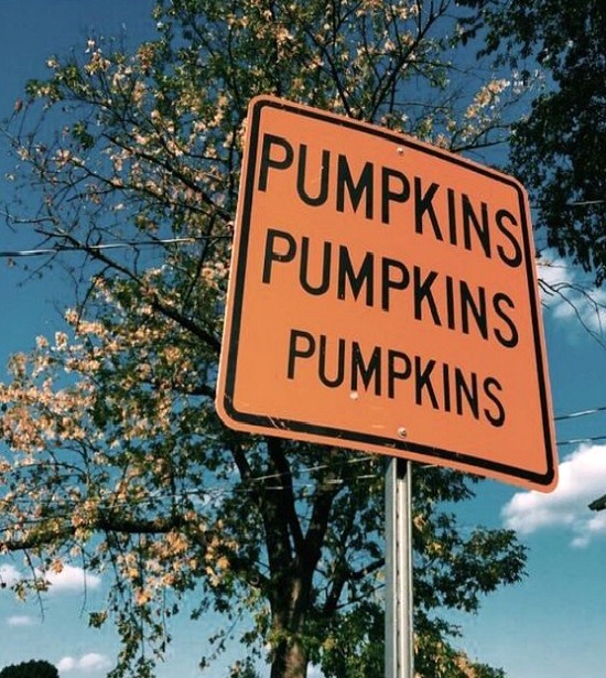 pumpkins-sign