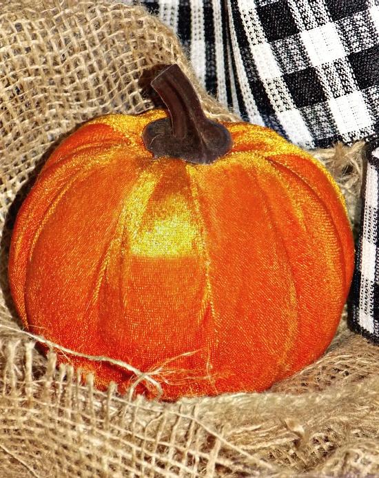 velvet-pumpkin-orange