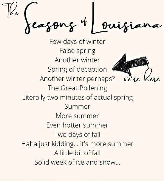 the seasons of Louisiana