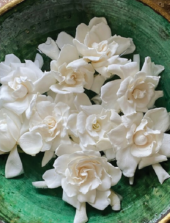 gardenias-in-green-bowl