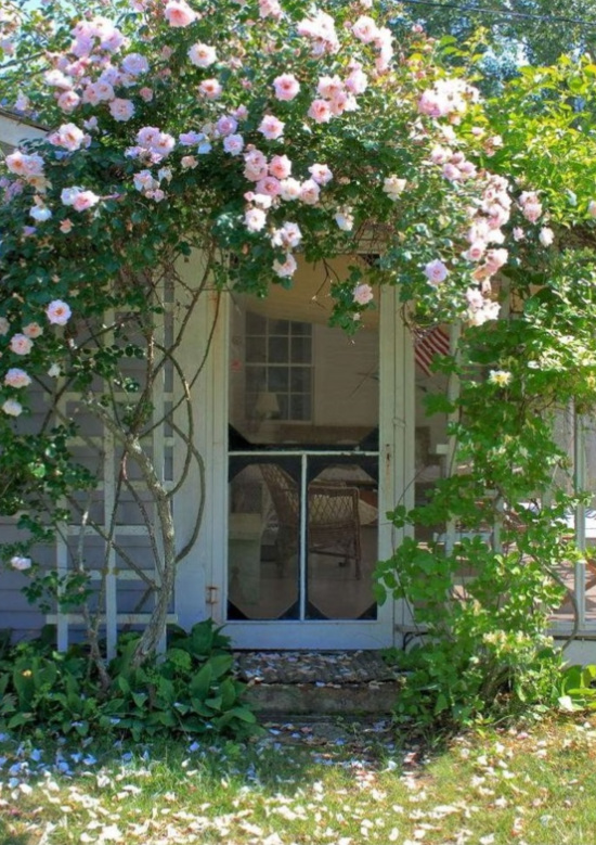 pink-rose-covered-arbor