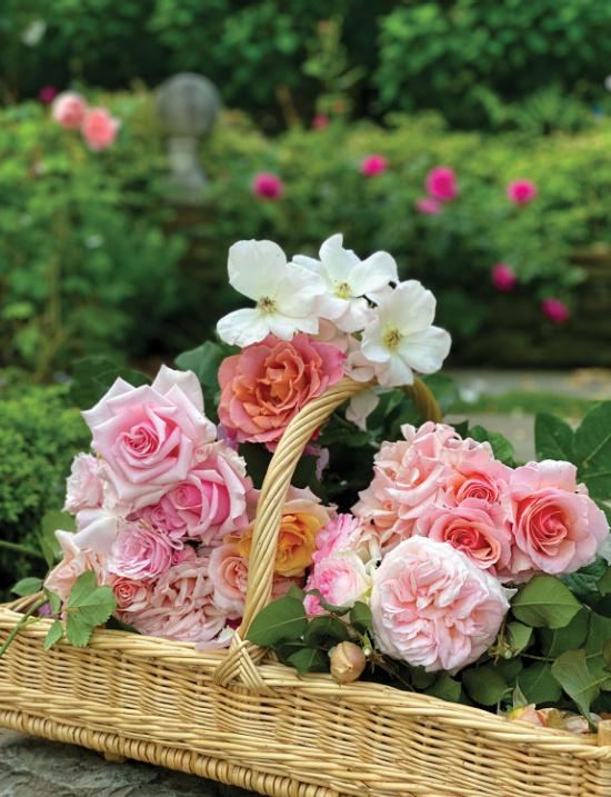 Charlotte-Moss-Flower-Magazine-roses-in-basket